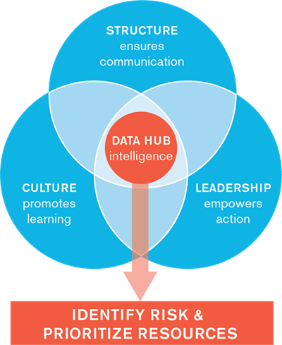 Blue lotus chart that represents our assessment process to identify risk and prioritize resources that includes structure, culture, and leadership, in the center of which is data